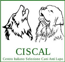 "<span style=""font-family: arial, helvetica, sans-serif; font-size: 10pt"">CISCAL<br />