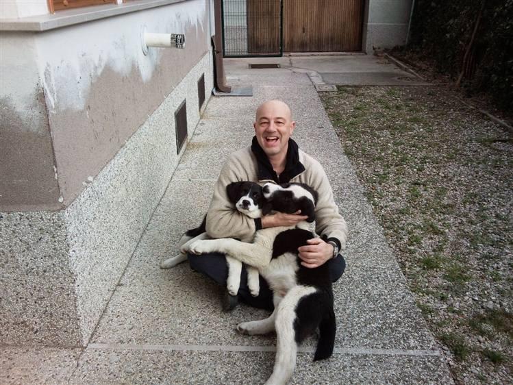 I cani da guardia e la legge domande ad un magistrato for Cani da tenere in casa