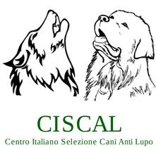 "<span style=""font-family: verdana,arial,helvetica,sans-serif; font-size: 10pt"">Cani da Guardiania Anti Lupo: <span style=""color: #cc0000"">2° STAGE NAZIONALE di 2 giorni sui cani da guardiania Anti Lupo</span></span>"
