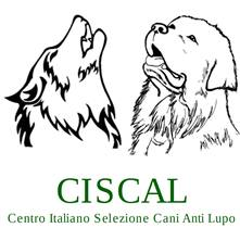 "<span style=""font-size: 12px""><span style=""font-family: verdana, geneva, sans-serif"">CANI DA GUARDIANIA ANTI LUPO - In tutta Italia, Corsi Base e Stage sul Cane da Guardiania Anti Lupo.</span></span><br />"